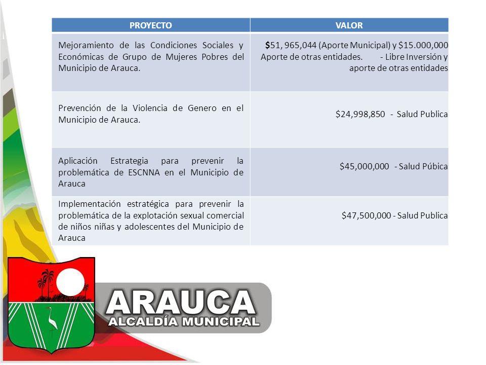 PROYECTO VALOR. Mejoramiento de las Condiciones Sociales y Económicas de Grupo de Mujeres Pobres del Municipio de Arauca.