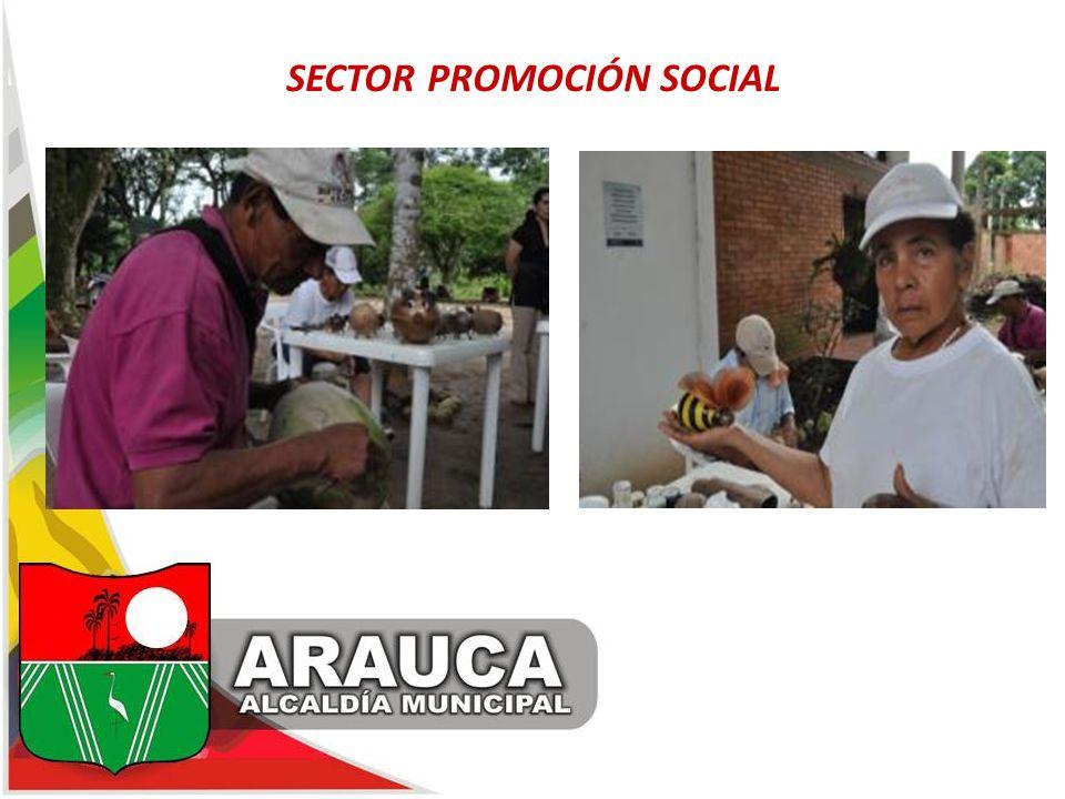 SECTOR PROMOCIÓN SOCIAL