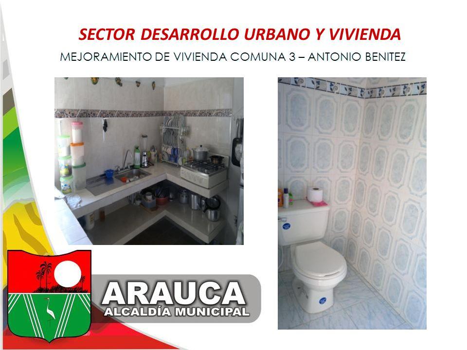 SECTOR DESARROLLO URBANO Y VIVIENDA
