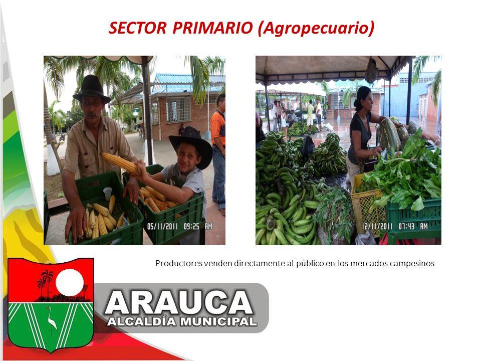SECTOR PRIMARIO (Agropecuario)