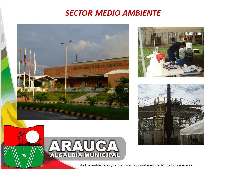 SECTOR MEDIO AMBIENTE Estudios ambientales y sanitarios al Frigomatadero del Municipio de Arauca