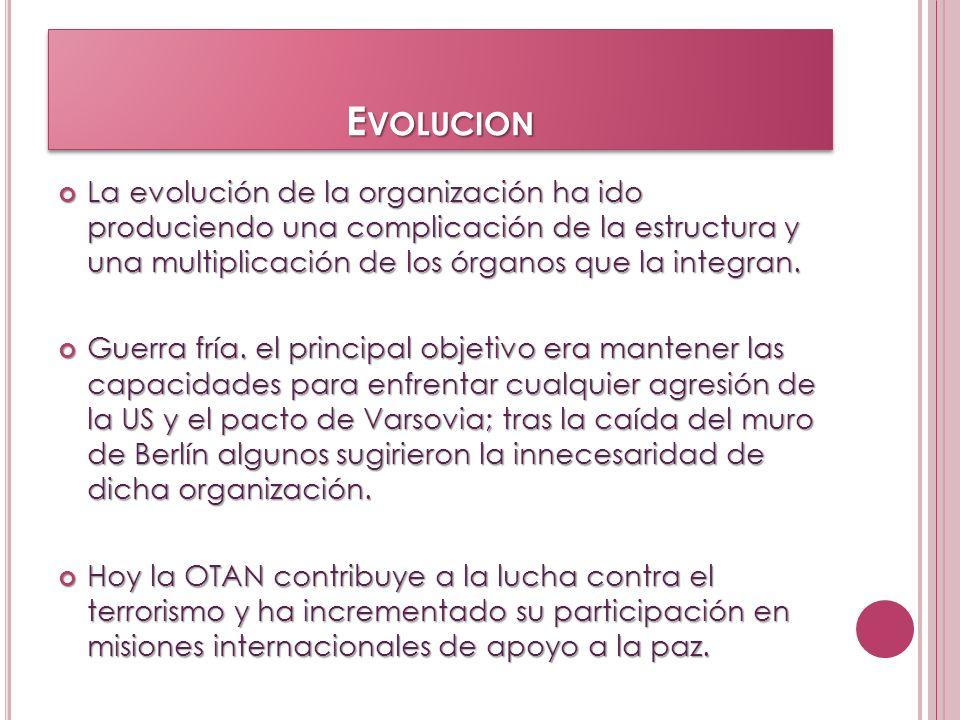 EvolucionLa evolución de la organización ha ido produciendo una complicación de la estructura y una multiplicación de los órganos que la integran.