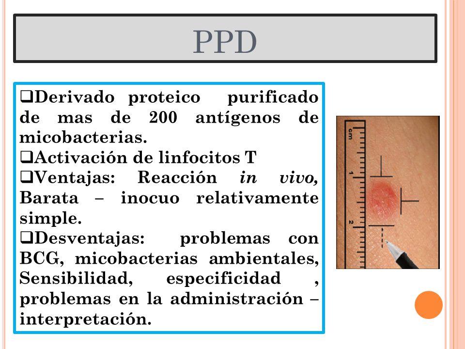 PPD Derivado proteico purificado de mas de 200 antígenos de micobacterias. Activación de linfocitos T.