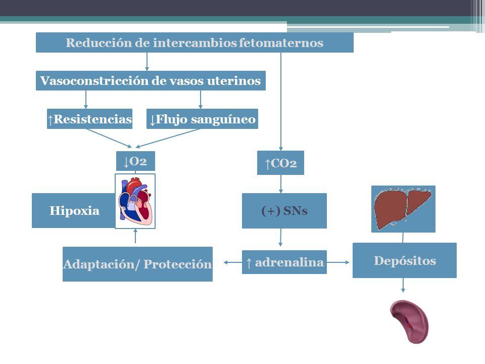 Reducción de intercambios fetomaternos