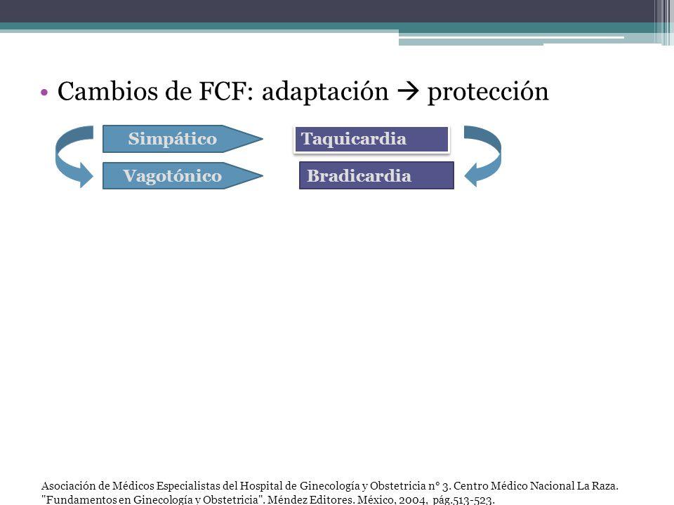 Cambios de FCF: adaptación  protección