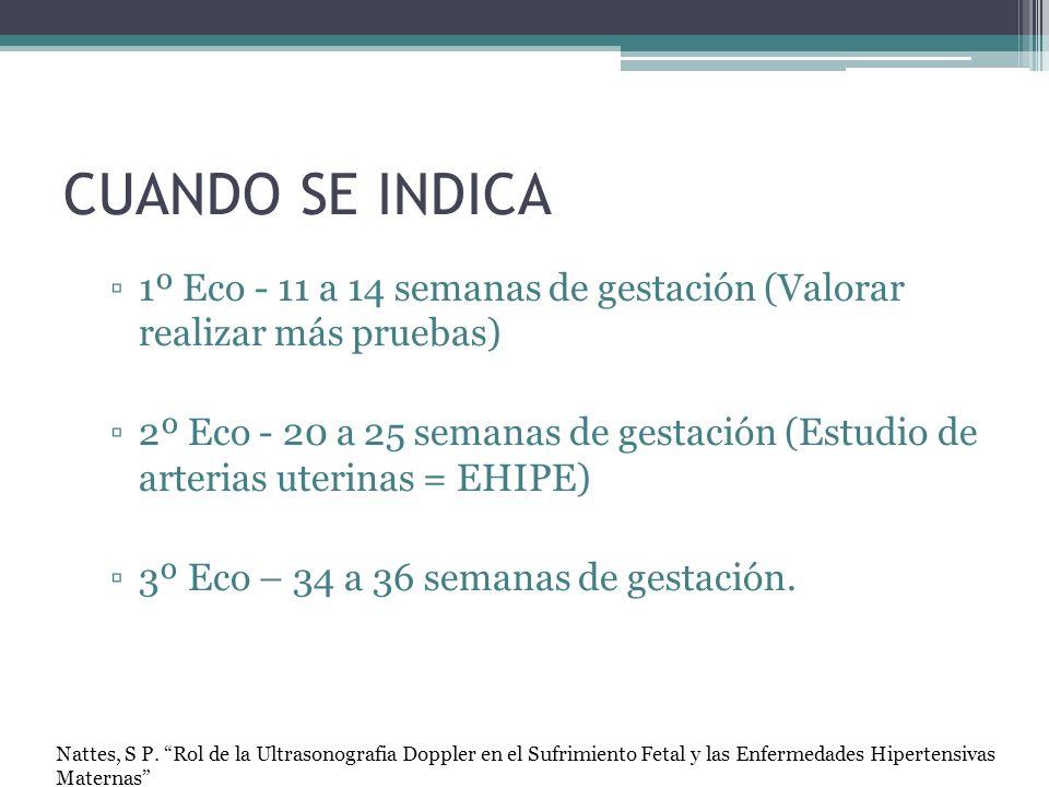CUANDO SE INDICA 1º Eco - 11 a 14 semanas de gestación (Valorar realizar más pruebas)