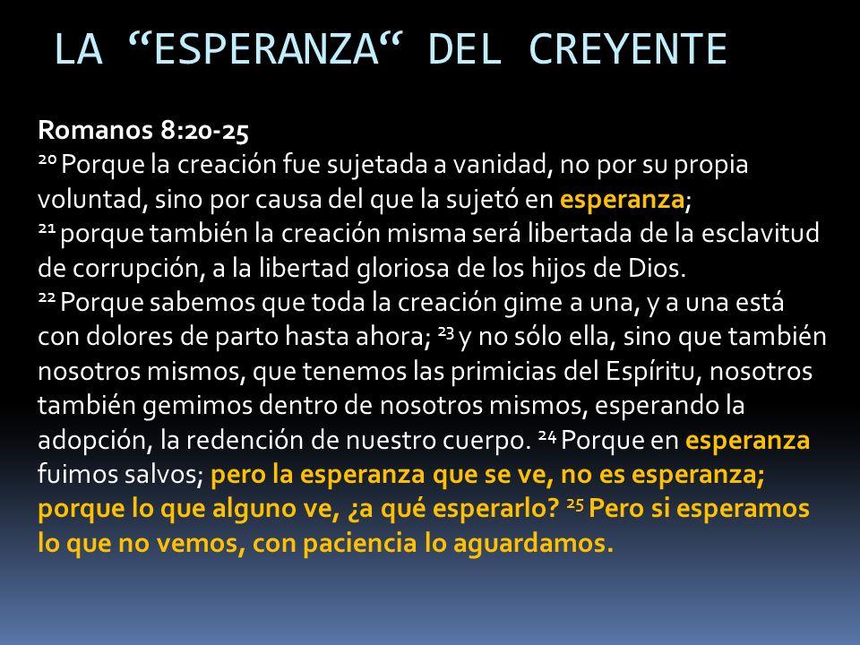 LA ESPERANZA DEL CREYENTE