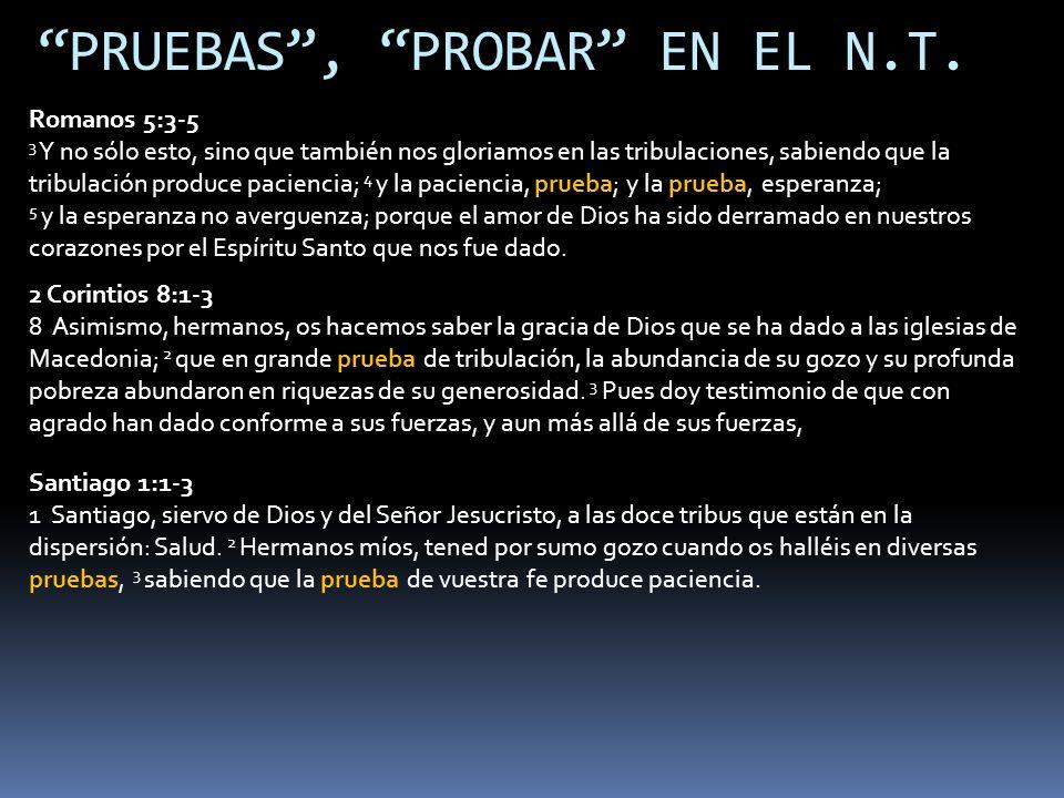 PRUEBAS , PROBAR EN EL N.T.