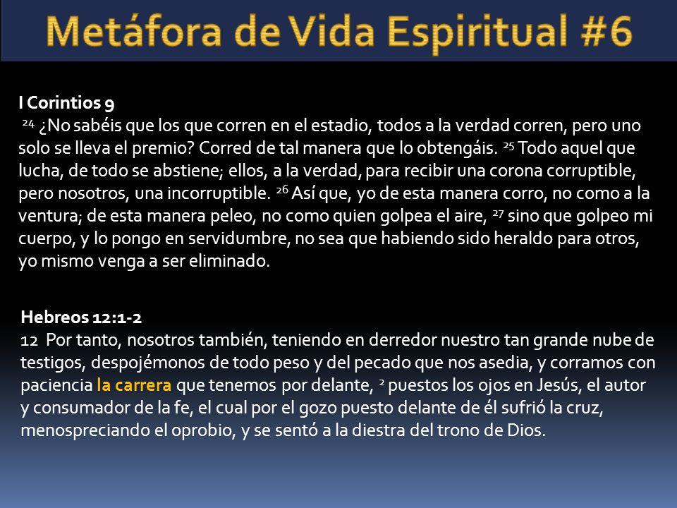 Metáfora de Vida Espiritual #6