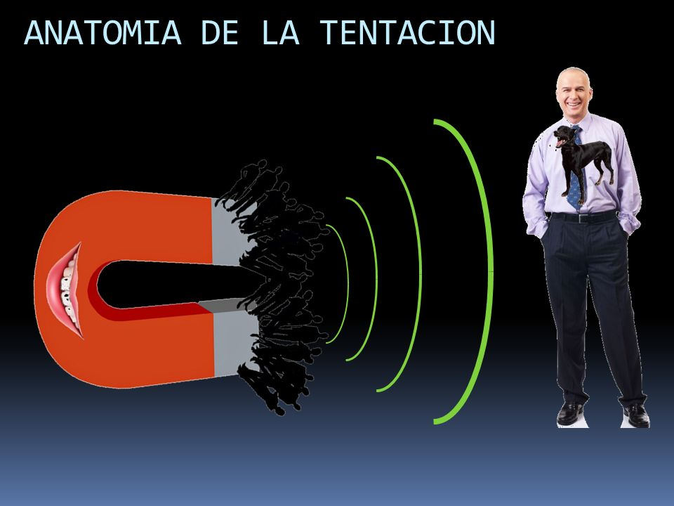 ANATOMIA DE LA TENTACION