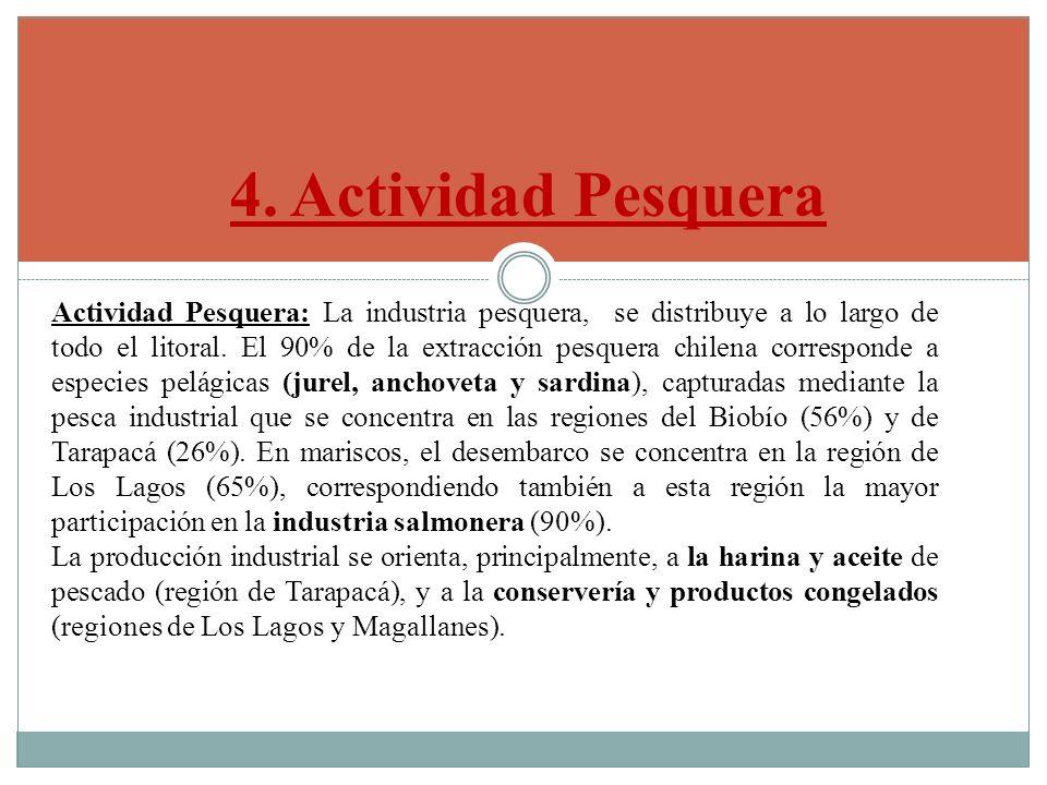 4. Actividad Pesquera