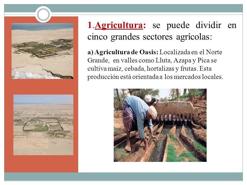 1.Agricultura: se puede dividir en cinco grandes sectores agrícolas: