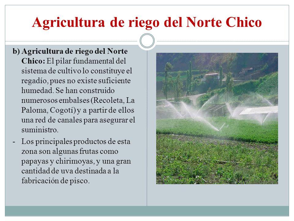Agricultura de riego del Norte Chico