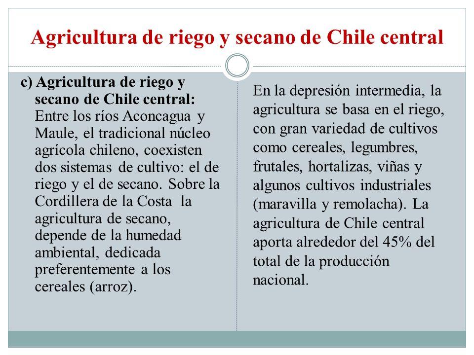 Agricultura de riego y secano de Chile central