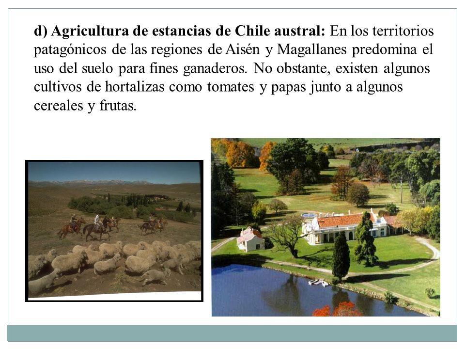 d) Agricultura de estancias de Chile austral: En los territorios patagónicos de las regiones de Aisén y Magallanes predomina el uso del suelo para fines ganaderos.