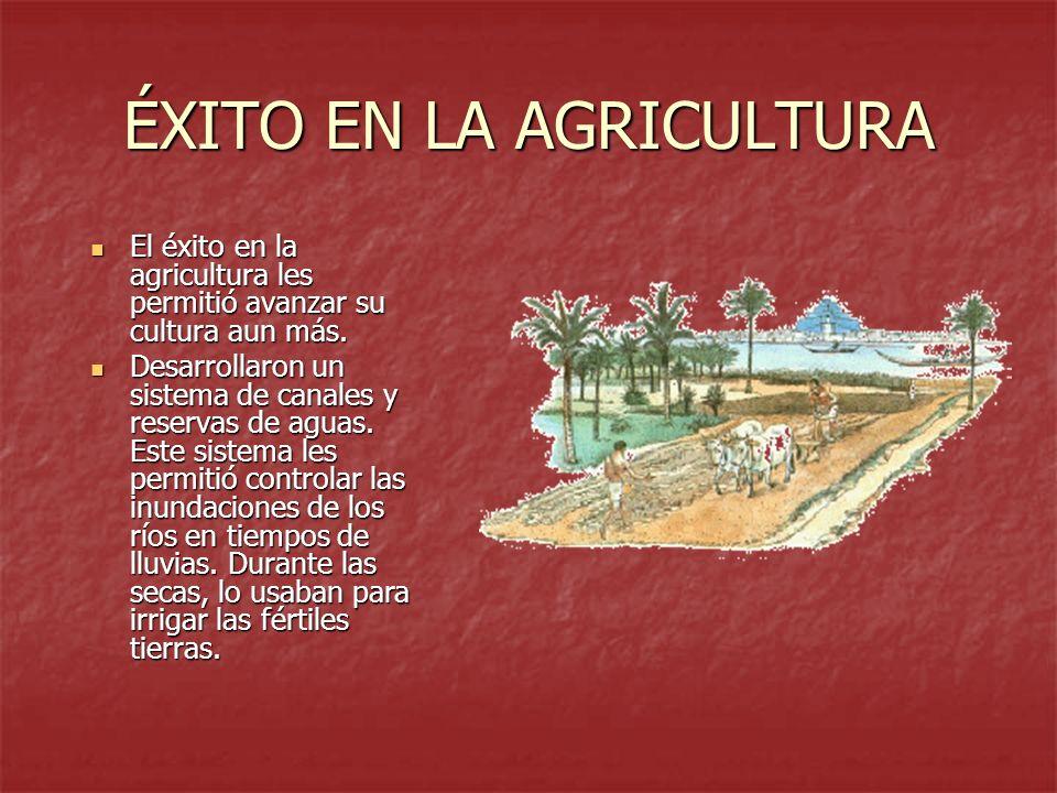 ÉXITO EN LA AGRICULTURA