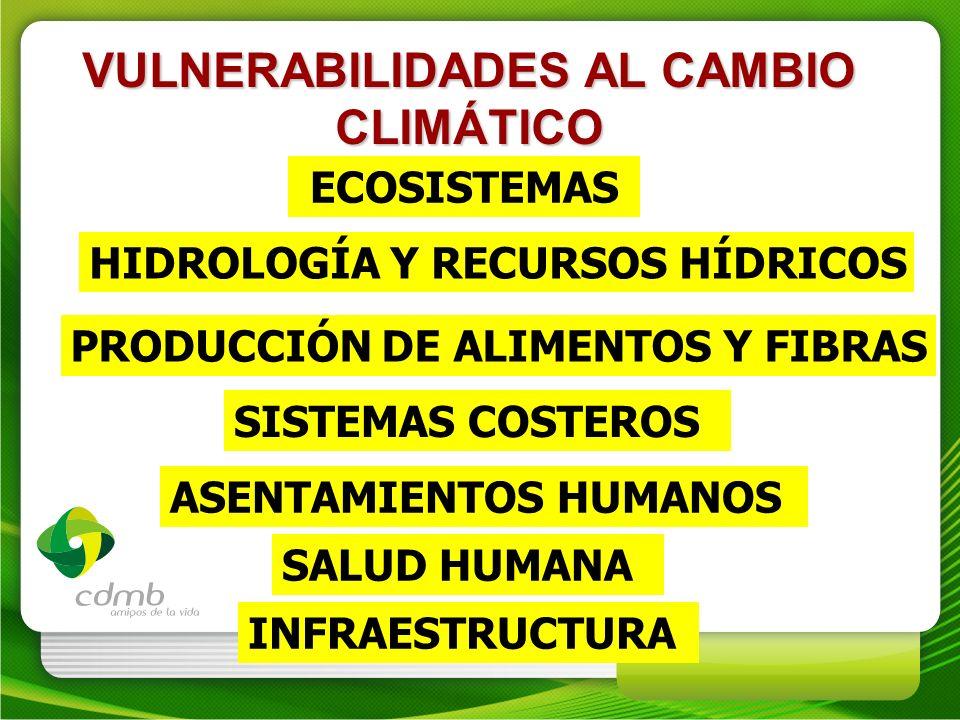 VULNERABILIDADES AL CAMBIO