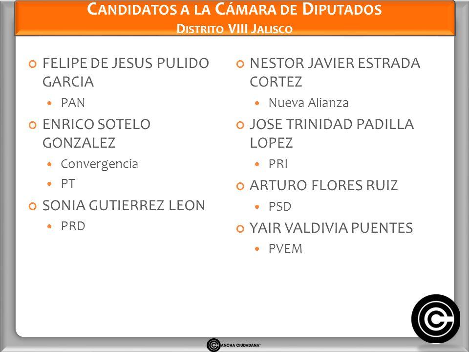Candidatos a la Cámara de Diputados Distrito VIII Jalisco