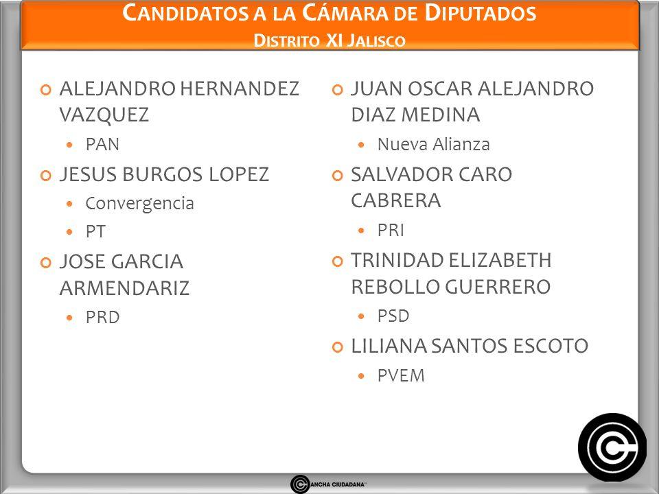 Candidatos a la Cámara de Diputados Distrito XI Jalisco