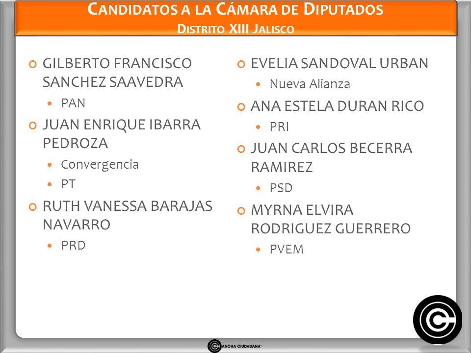 Candidatos a la Cámara de Diputados Distrito XIII Jalisco
