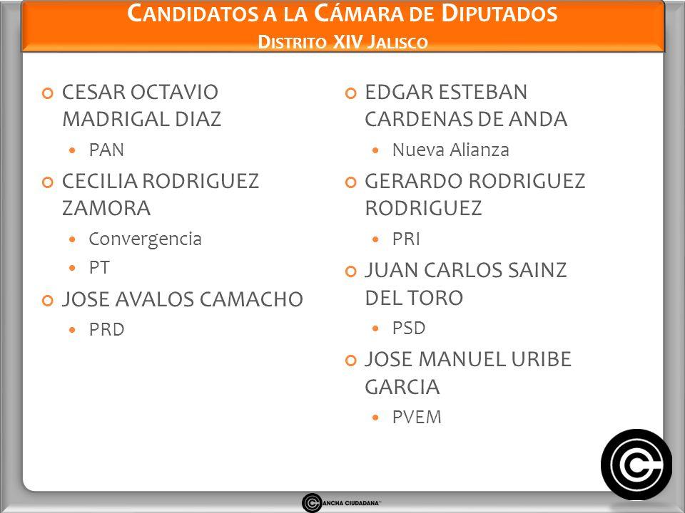 Candidatos a la Cámara de Diputados Distrito XIV Jalisco