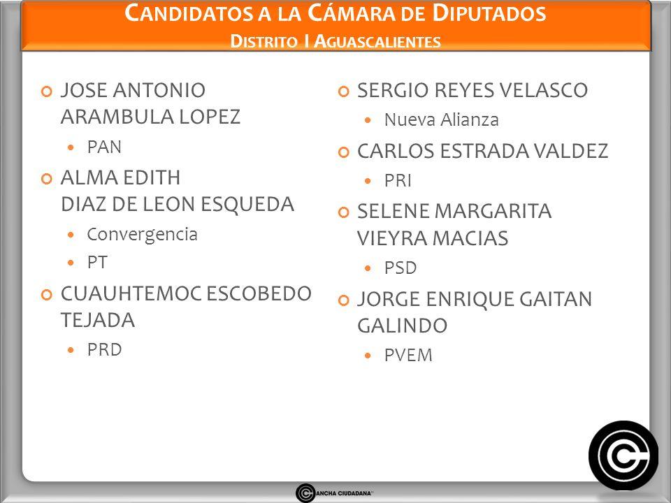 Candidatos a la Cámara de Diputados Distrito I Aguascalientes