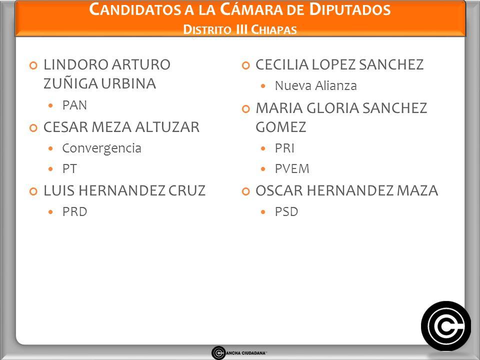 Candidatos a la Cámara de Diputados Distrito III Chiapas