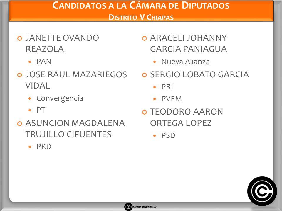 Candidatos a la Cámara de Diputados Distrito V Chiapas