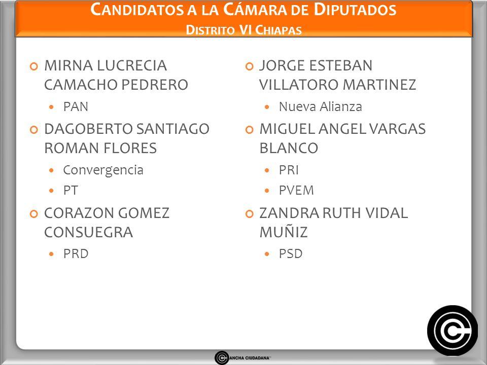 Candidatos a la Cámara de Diputados Distrito VI Chiapas