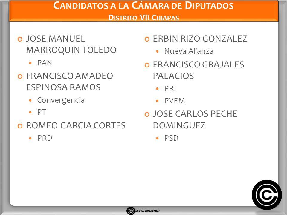Candidatos a la Cámara de Diputados Distrito VII Chiapas