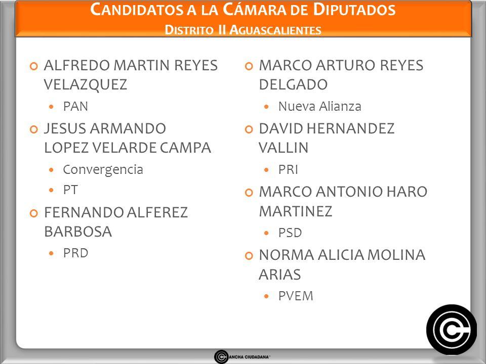 Candidatos a la Cámara de Diputados Distrito II Aguascalientes