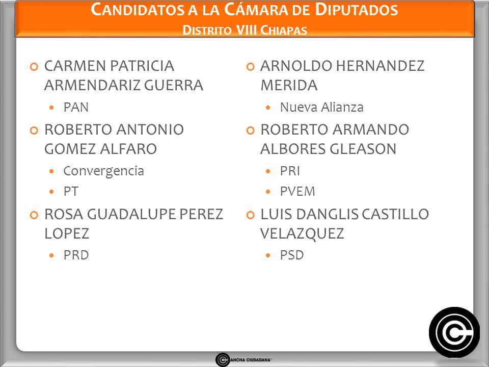 Candidatos a la Cámara de Diputados Distrito VIII Chiapas