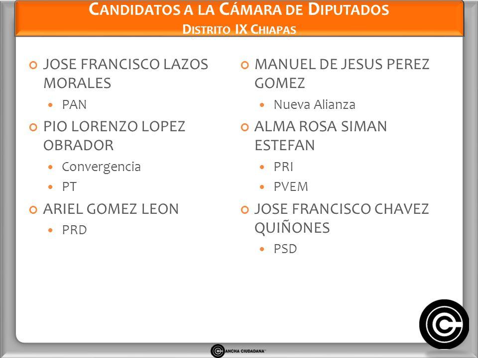 Candidatos a la Cámara de Diputados Distrito IX Chiapas
