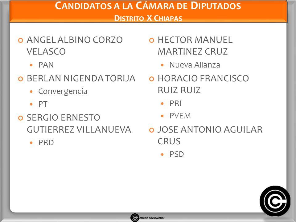 Candidatos a la Cámara de Diputados Distrito X Chiapas