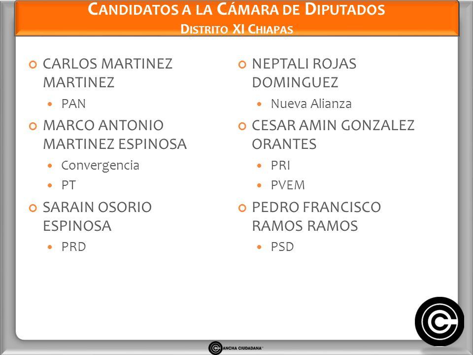 Candidatos a la Cámara de Diputados Distrito XI Chiapas