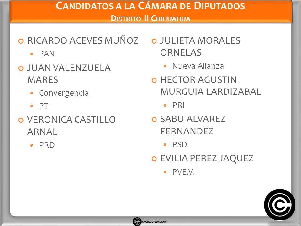 Candidatos a la Cámara de Diputados Distrito II Chihuahua