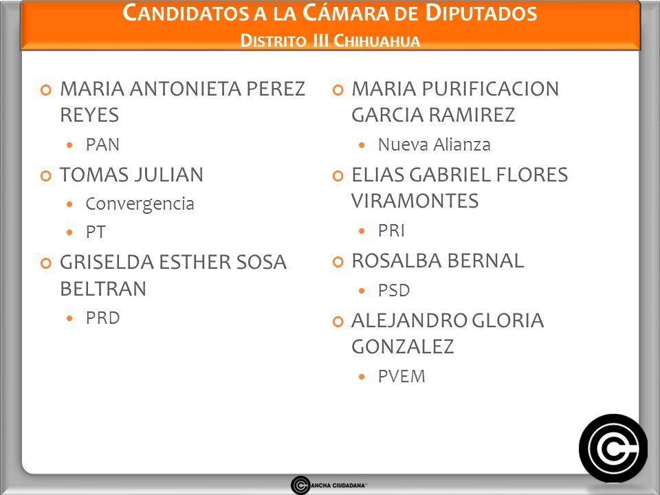 Candidatos a la Cámara de Diputados Distrito III Chihuahua