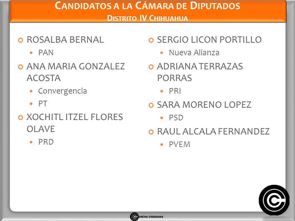 Candidatos a la Cámara de Diputados Distrito IV Chihuahua