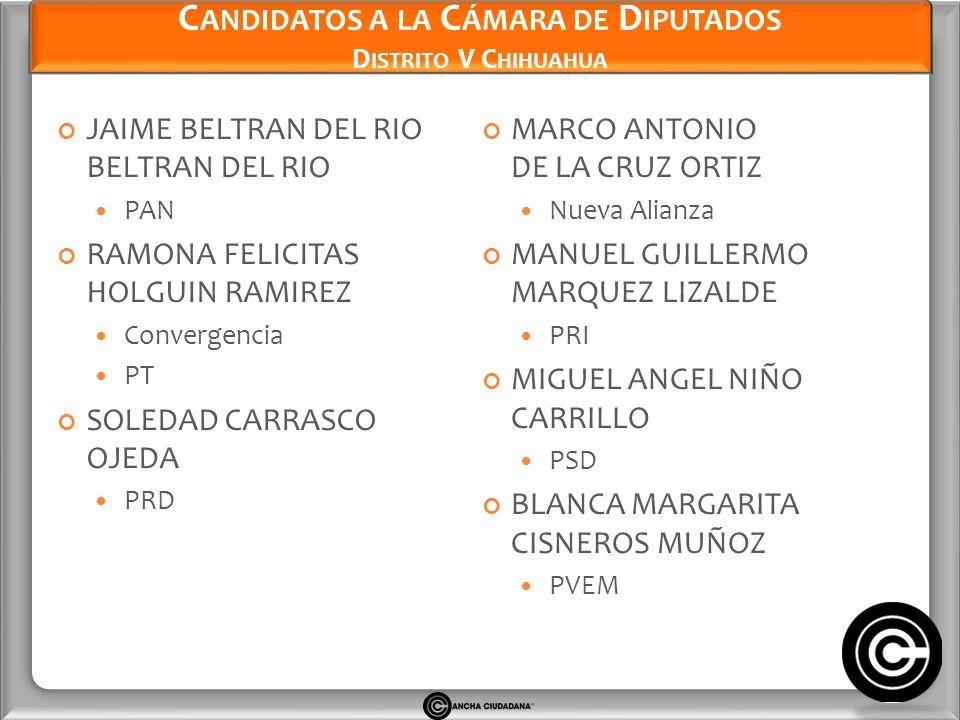 Candidatos a la Cámara de Diputados Distrito V Chihuahua