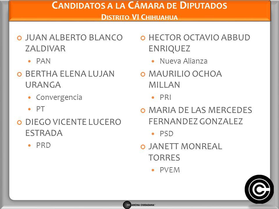 Candidatos a la Cámara de Diputados Distrito VI Chihuahua