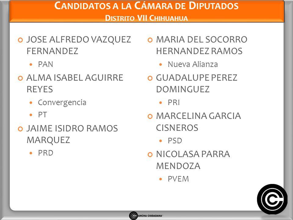 Candidatos a la Cámara de Diputados Distrito VII Chihuahua