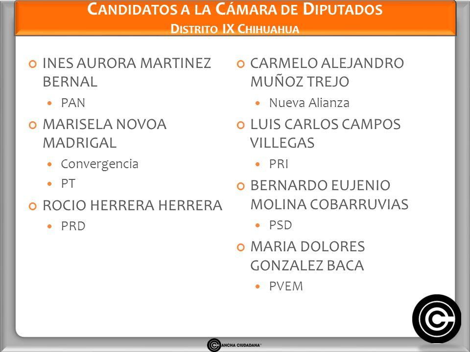 Candidatos a la Cámara de Diputados Distrito IX Chihuahua