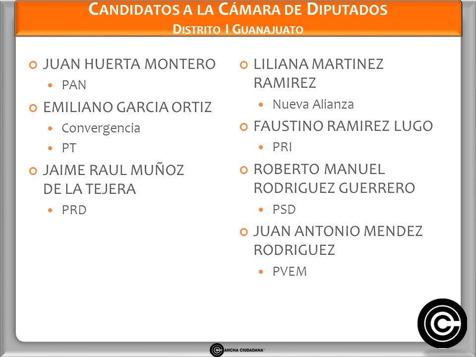 Candidatos a la Cámara de Diputados Distrito I Guanajuato