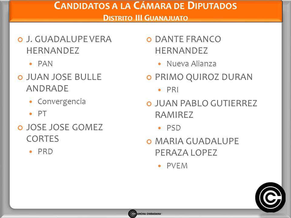 Candidatos a la Cámara de Diputados Distrito III Guanajuato