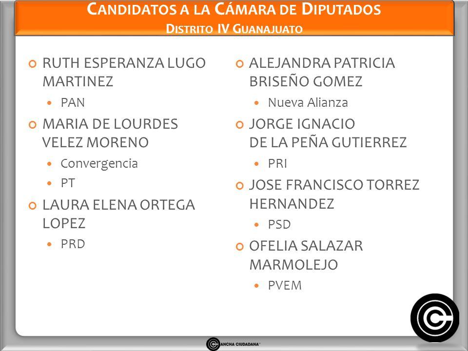 Candidatos a la Cámara de Diputados Distrito IV Guanajuato