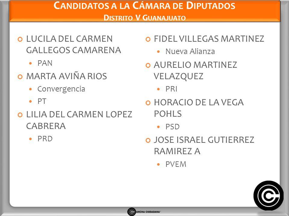 Candidatos a la Cámara de Diputados Distrito V Guanajuato