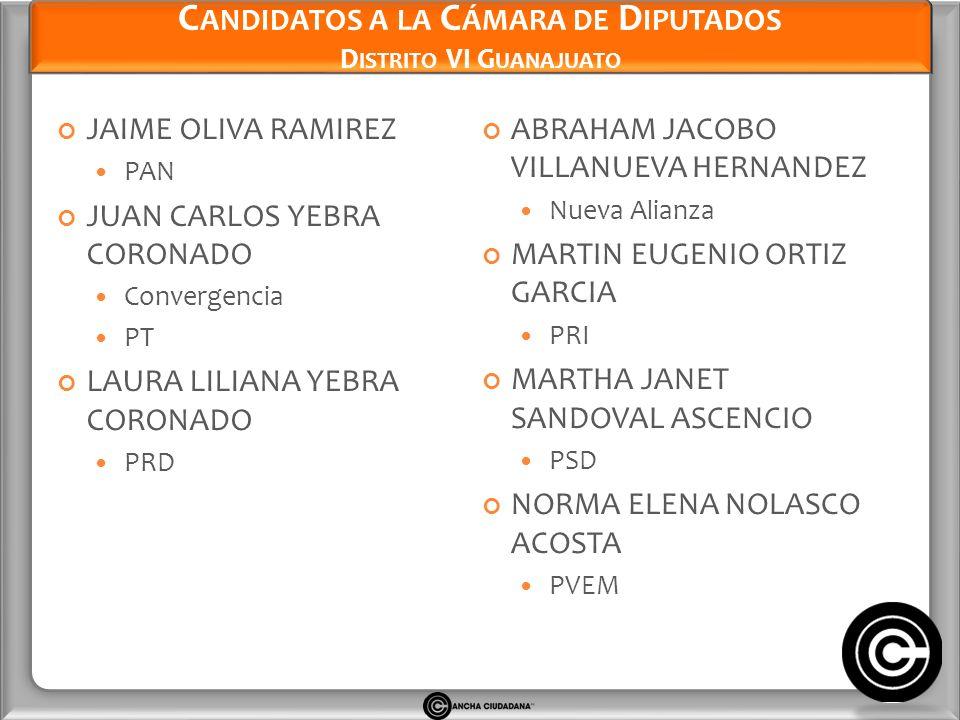Candidatos a la Cámara de Diputados Distrito VI Guanajuato