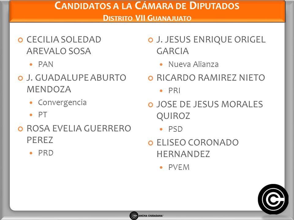 Candidatos a la Cámara de Diputados Distrito VII Guanajuato