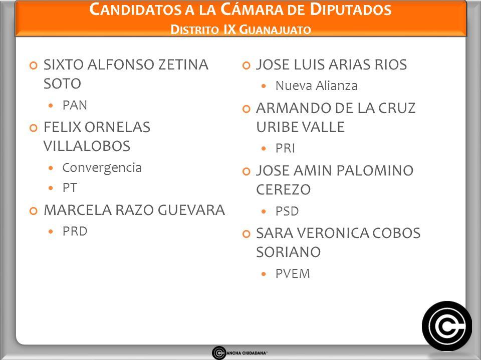 Candidatos a la Cámara de Diputados Distrito IX Guanajuato