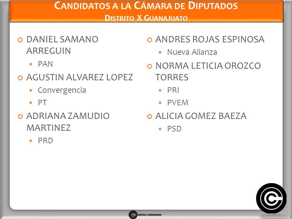 Candidatos a la Cámara de Diputados Distrito X Guanajuato